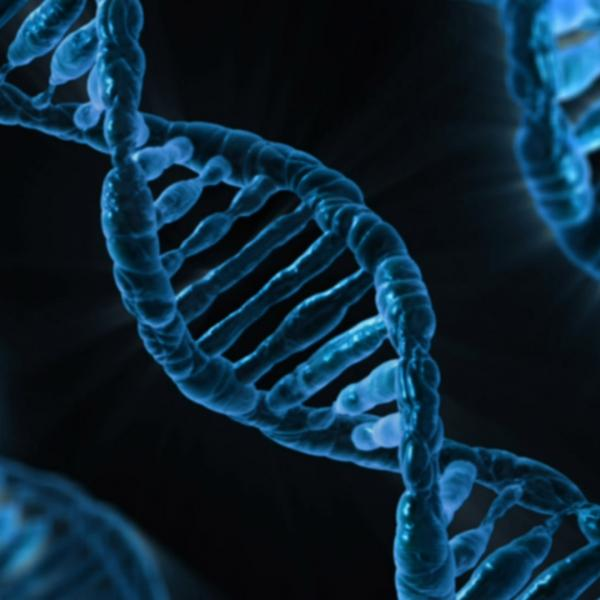 Research for all: A pandemic magnifies the potential of the Genomics Education Partnership