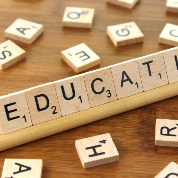 The Determinants of Teachers' Occupational Choice