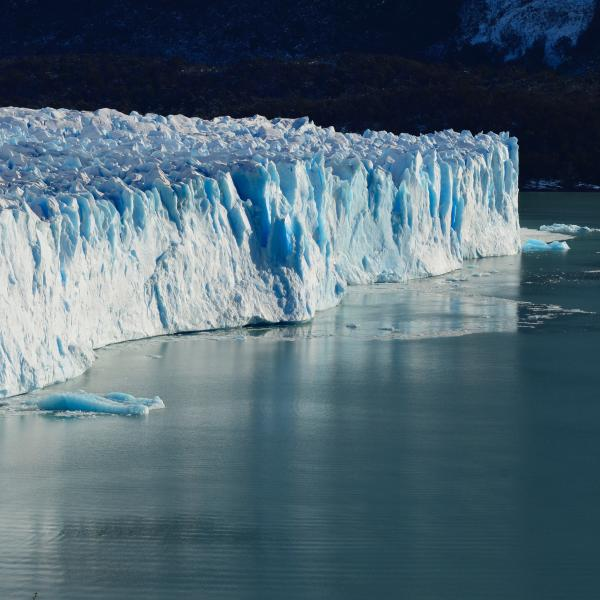 """McDonnell Distinguished Lecture Series Colloquium """"Falling dominoes: Ice sheets and sea level"""""""