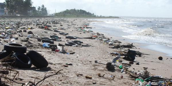Litter on a beach